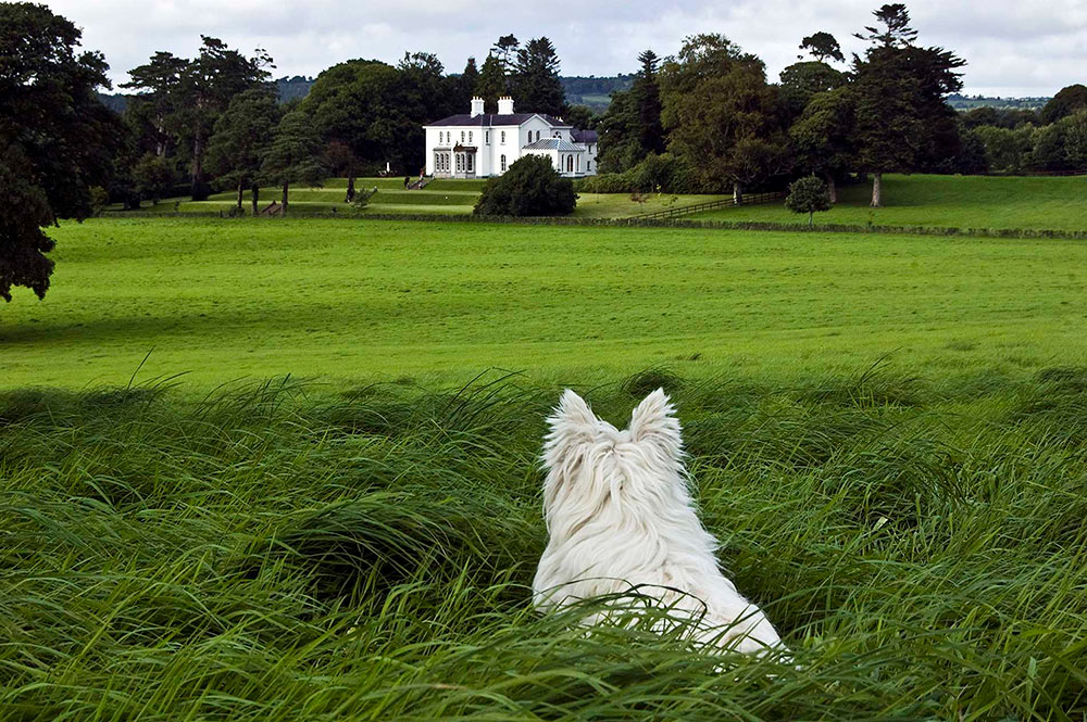 Coolclogher House View
